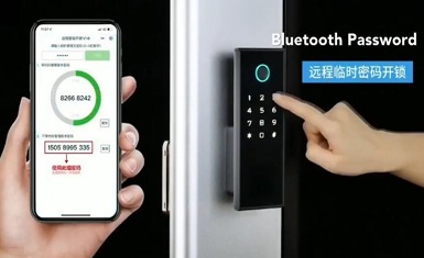 Fingerprint Intelligent Smart Lock
